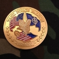 US Coin  -  Task Force Falcon, Kosovo  (004)
